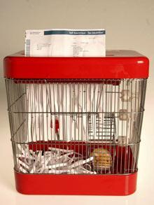 Hamster-paper-shre_1213170f